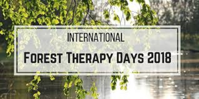 The first International Forest Therapy Days – Conference and Retreat, Finland 2018