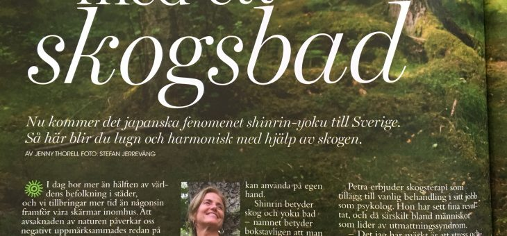 Media featuring Forest Bathing and Petra Ellora Cau Wetterholm
