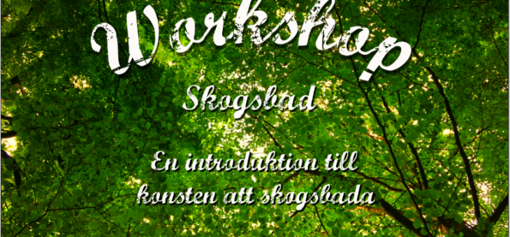 Workshop Skogsbad, 29-30 September, 2018