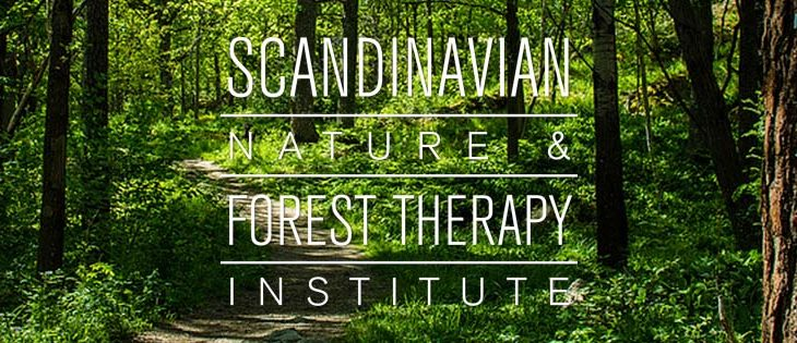 Scandinavian Nature and Forest Therapy Institute